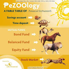 pezoology choose your vehicle to grow your money sun life allows you