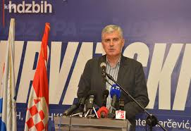 Image result for dragan covic za dom spremni
