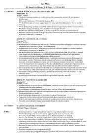Account Executive Healthcare Resume Samples Velvet Jobs