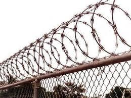 barbed wire fence prison. Razor Wire Fence Barbed Prison A