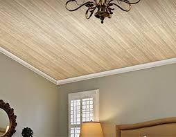 gallery drop ceiling decorating ideas. CeilingStunning Drop Ceiling Design Gallery For Decorating Ideas Lovely E