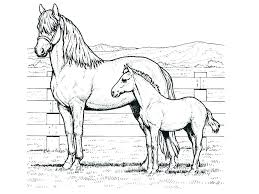 spirit the horse coloring pages unicorn coloring pages printable sheets pin the tail on horse game