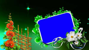 Free Downloads Wedding Motion Full Hd Blue Background Video Free Downloads Youtube
