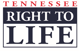 Partial Birth Abortion Plan Tennessee Abortion Laws