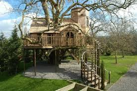 10 Most Awesome Tree Houses  OddeeCoolest Tree Houses