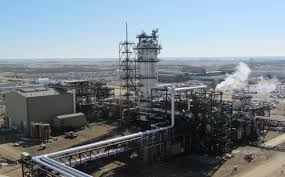 Image result for penyimpanan karbon