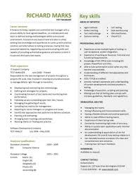 Professional Resume Layout 9 A Concise And Attention Grabbing Test Manager  CV Template.
