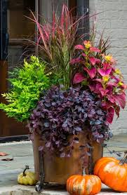 Best 25 Fall Flower Pots Ideas On Pinterest  Fall Planters Fall Container Garden Ideas For Fall