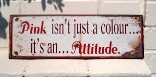 Image result for pink is an attitude