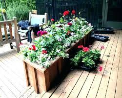 front door flowers front door flower pots best plant full size of ideas beautiful planters for
