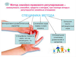 Реферат Природное и социальное в человеке vinyl fest ru Реферат на тему метод семейного права