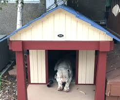 outdoor dog run large size of house enclosures chain link kennel home and charming how to outdoor dog kennels for large