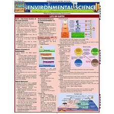 environmental degradation essay gallery images of essay on environmental degradation