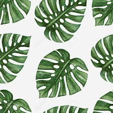 Palm Leaf Pattern Adorable 4848 Palm Leaf Cliparts Stock Vector And Royalty Free Palm Leaf