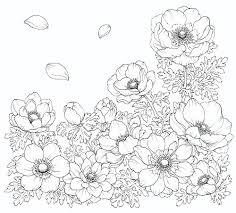 トップコレクション 花のぬりえ 子供と大人のための無料印刷可能な
