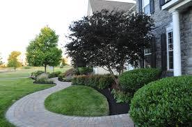 Pruning Pic in Garnet Valley, Glen Mills, West Chester, Media, PA -
