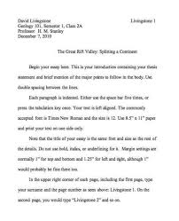 multiple essay in english
