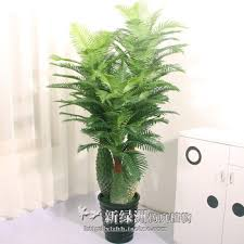 get quotations simulation potted bonsai living room office decoration artificial plants fake tree 18 meters three treasure pineapple cheap office plants