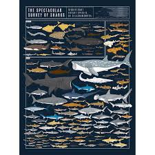 Pop Chart Lab Posters Sale 10 Off Authorized Retailer