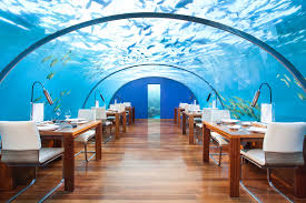 underwater restaurant disney world. Ithaa Restaurant In Maldives Underwater Disney World