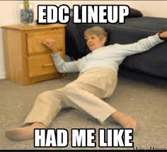 Top 10 Ways The Internet Reacted To The EDC Las Vegas Lineup ... via Relatably.com
