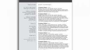 Word Resume Template Free Download Cv Curriculum Vitae Format