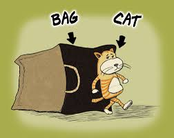 Image result for cat;s out of the bag