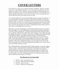 what is political science essay relation