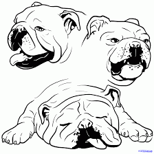 Coloring Page Bulldog Food Ideas Pinterest