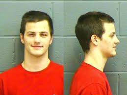 Former UGA Student pleads guilty to charges of criminal damage ...