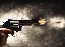 Resultado de imagem para imagem de arma de fogo