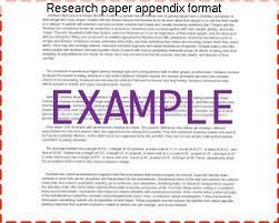research paper appendix format essay help research paper appendix format