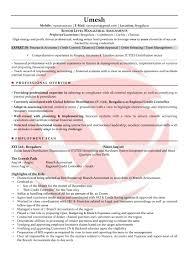 Formato Pdf Accountant Sample Resumes Download Resume