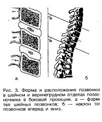 Реферат Педиатрия ru