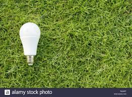 Green Energy Lighting Concept Of Green Energy The Led Light Bulb On A Green Grass