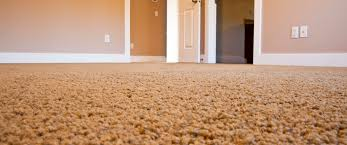 cleaning services york pa. Modren Services Why Use A Professional Carpet Cleaning Service In Cleaning Services York Pa