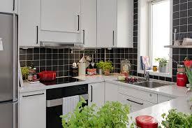 Small Picture Modern Fresh Apartment Kitchen Decor Emejing Apartment Kitchen
