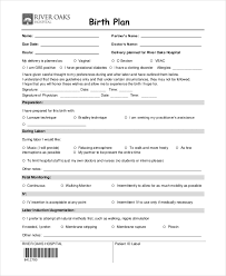 Birthing Plan Template Birth Plan Template 11 Free Word Pdf Documents Download