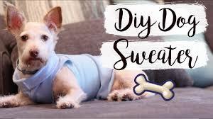 knitting patterns coat easy diy dog sweater no sew pet diys knitting patterns coat