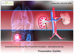 Powerpoint Templates Online Free Ppt Download Kidney Stone Powerpoint Templates Powerpoint