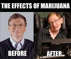 Marijuana: Not Even Once. - Imgur via Relatably.com