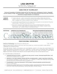 It Manager Resume It Manager Resume Sample Service Delivery Manager ...