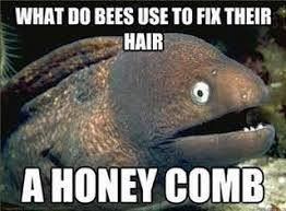 Image result for bee jokes