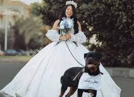 """بعد إعلان زواجها من """"كلب"""".. من هي البلوجر هبة مبروك؟"""