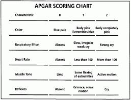 Apgar Scoring Guide Related Keywords Suggestions Apgar