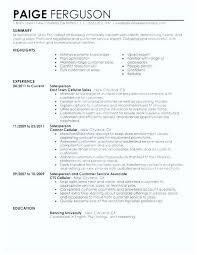 Sales Associate Resume Example Customer Sales Associate Sample Resume Ha