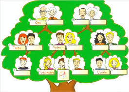 The Gap Fill Exercises With The Family Tree Download
