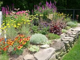 Small Picture butterfly garden designs best 25 perennial gardens ideas on