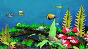 fish tank wallpaper best live for wallpapers beautiful pictures one image .  fish tank wallpaper ...