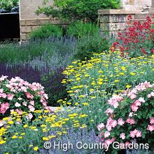 country gardens. This Country Gardens